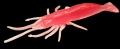 JENZI / DEGA Real Shrimp Imitat, pink UV, 10 cm, Packungsinhalt: 5 Stück